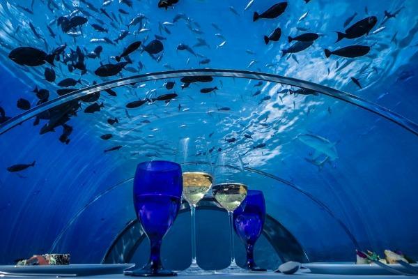 Najveći podvodni restoran na Maldivima
