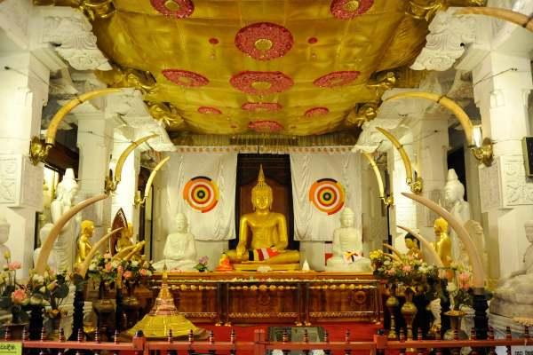 Razlozi koji će vas ubediti da posetite Šri Lanku