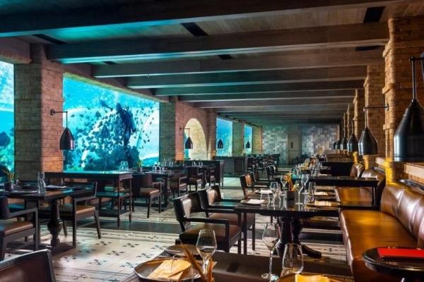 Zavirite u Koral - najlepši restoran sveta