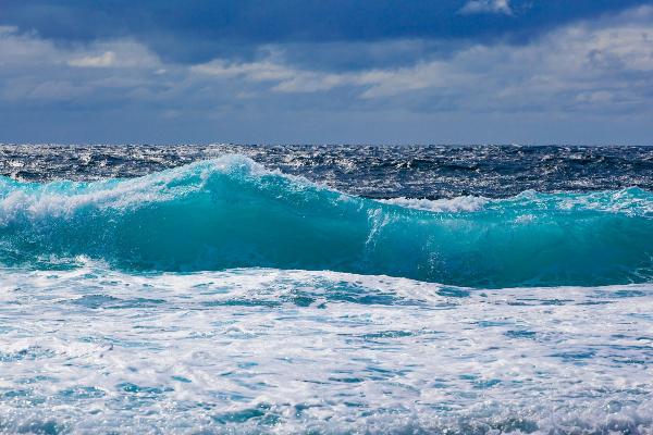 Krenite stopama Čarlsa Darvina i otkrijte Mauricijus